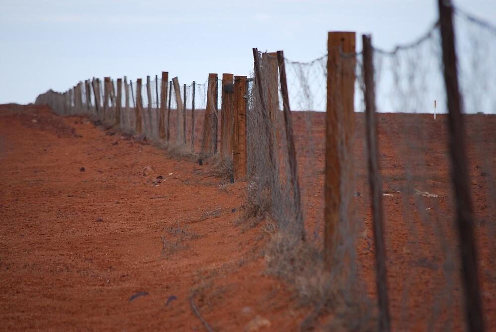 The Dog Fence Oodnadatta Track  by GuyR