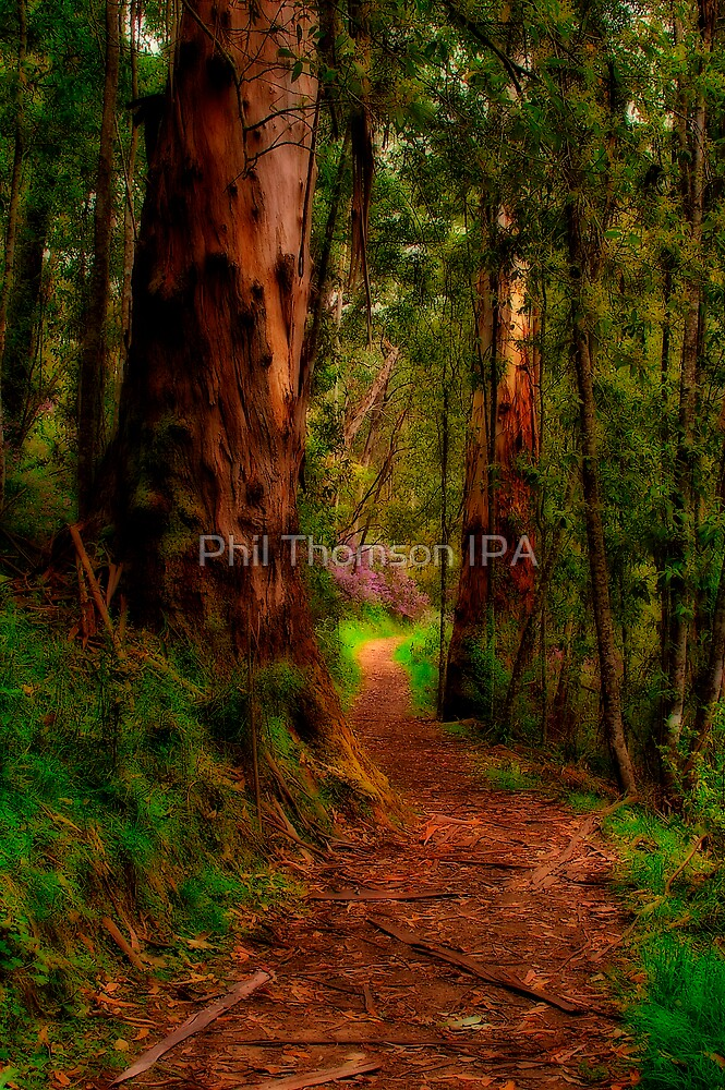 """The Pathway"" by Phil Thomson IPA"