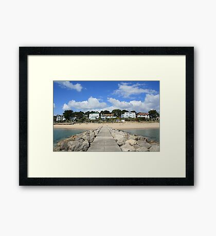 How the other half live! Framed Print