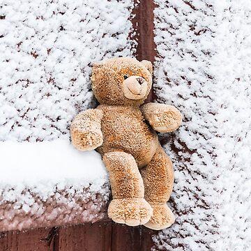Teddy Bear by Lanas
