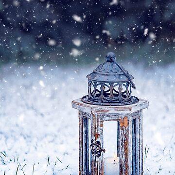 Lantern by Lanas