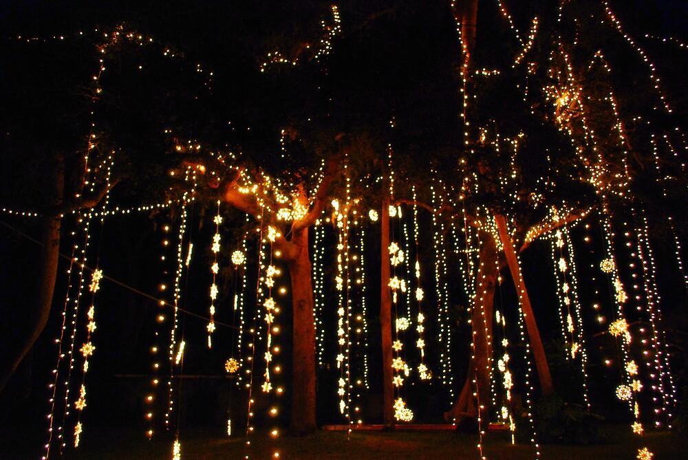 Raining Lights by mekea