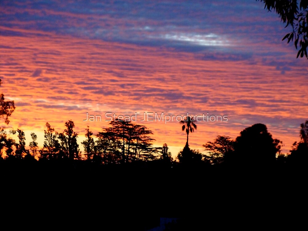 silhouetted sunset by Jan Stead JEMproductions