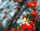 Be the Gift... by LindaR