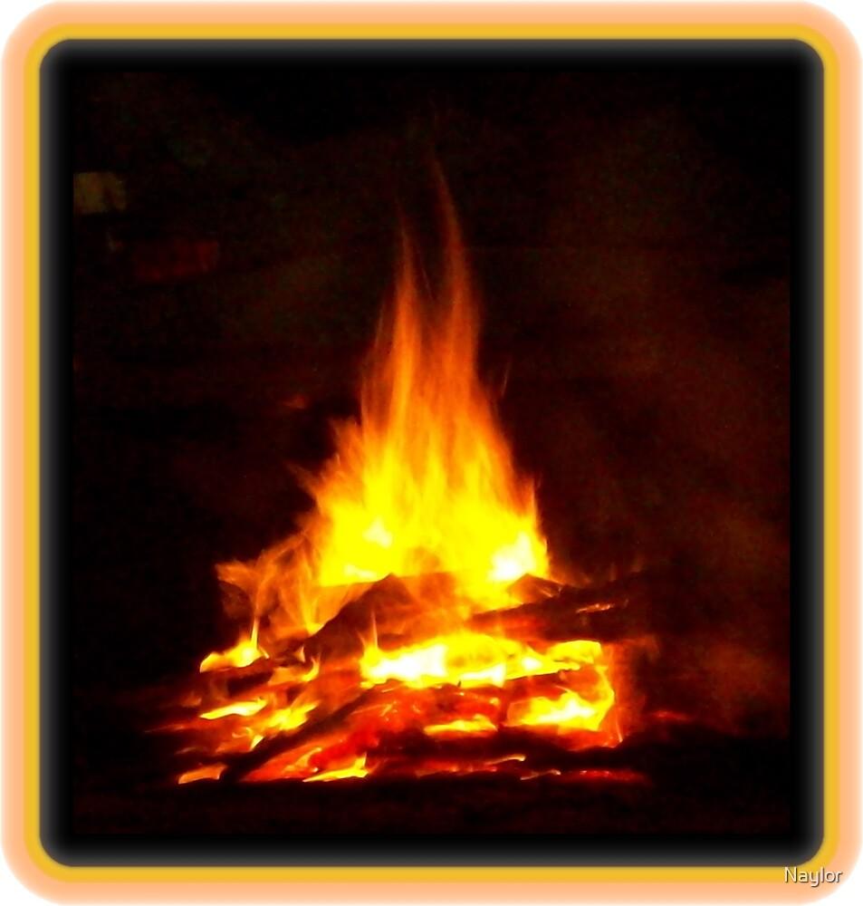 Bonfire by Naylor