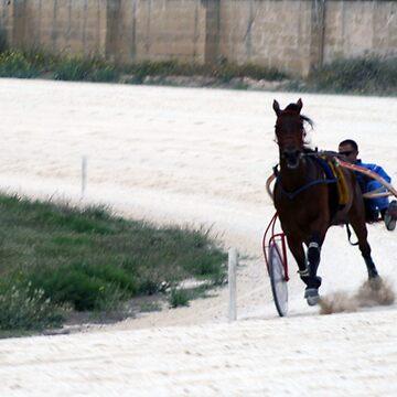 Horse racing by sbosic