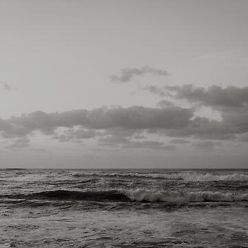 Pacific Ocean in Shades of Grey by adventurlings