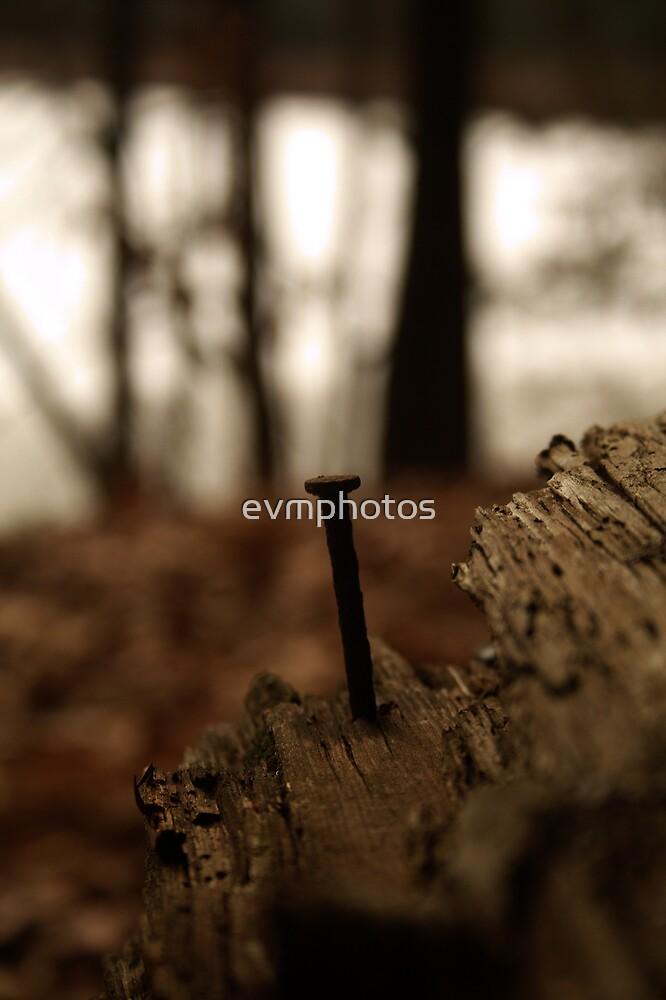 Human Nature by evmphotos