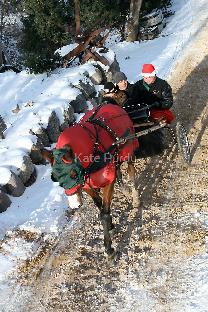 """""""In a One Horse Open Sleigh"""" by Kate Purdy"""