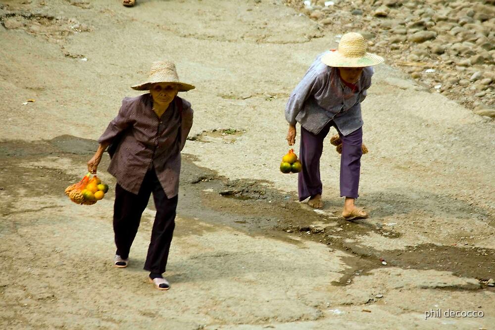 Citrus Ladies by phil decocco
