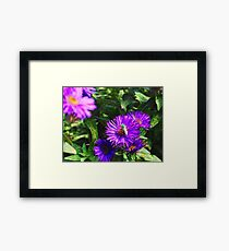 Flowers with a Bee Framed Print