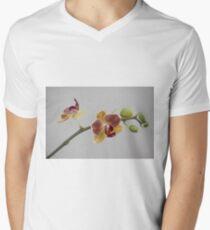 A stem of orchids Men's V-Neck T-Shirt