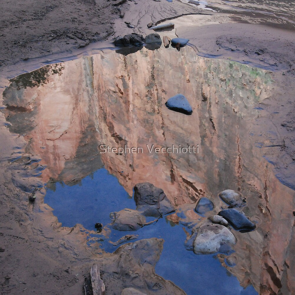 Zion Canyon Reflection Detail by Stephen Vecchiotti
