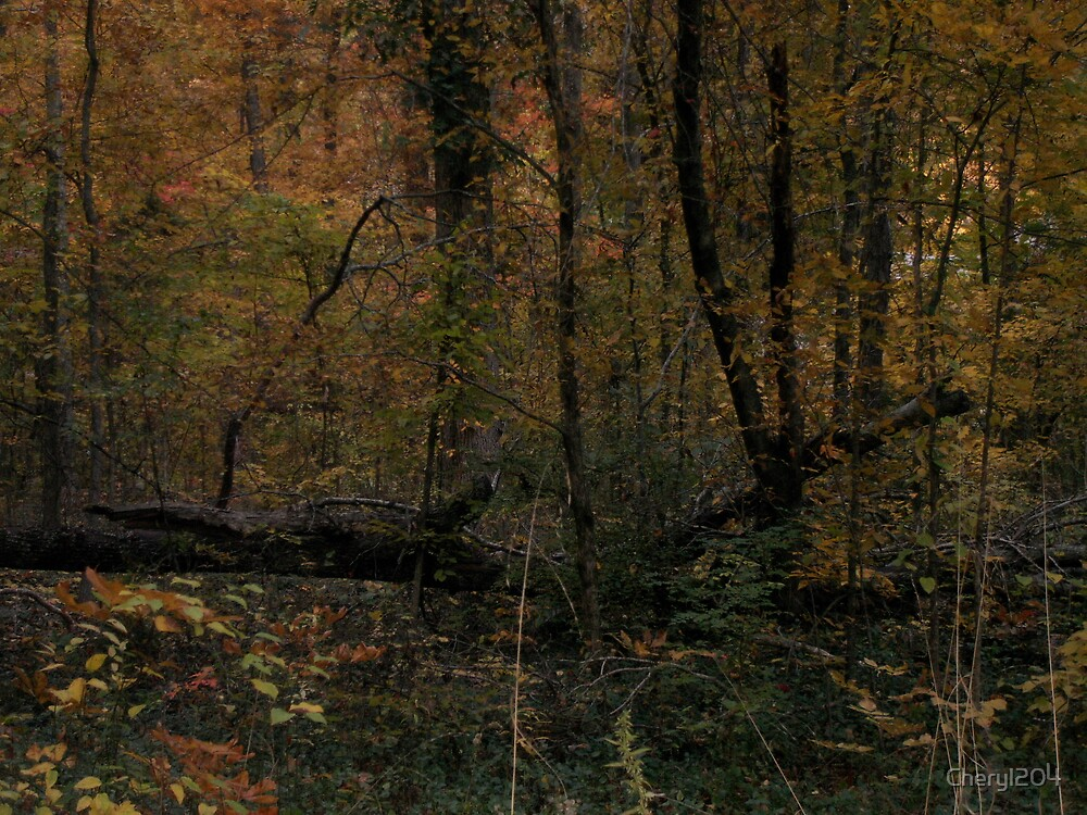 Forest at Dusk by Cheryl204