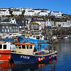 Blue Sky at Mevagissey by DMHotchin