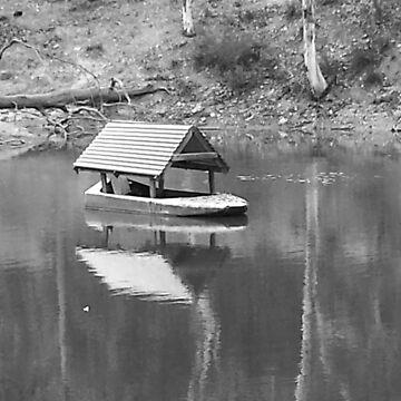 Billabong boat by chany
