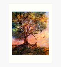 Sunset at Fox Mountain Art Print