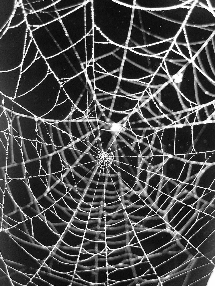 Double Web by junebug076