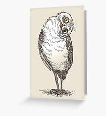 Owl Witness Greeting Card