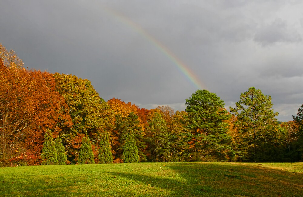 Life is Like a Rainbow by Patricia Montgomery