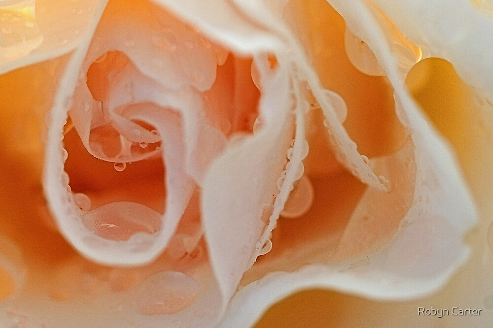 Into the Petals by Robyn Carter