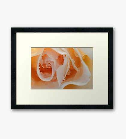Into the Petals Framed Print
