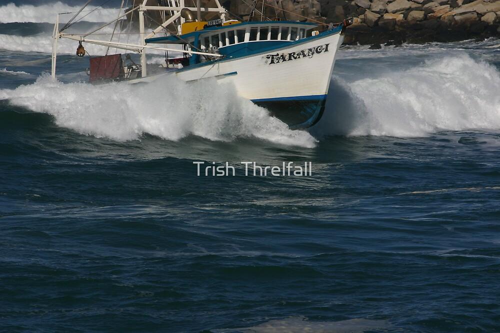 surfing the bar by Trish Threlfall