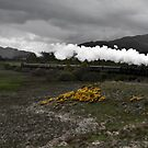 The Strathspey Railway by Roddy Atkinson