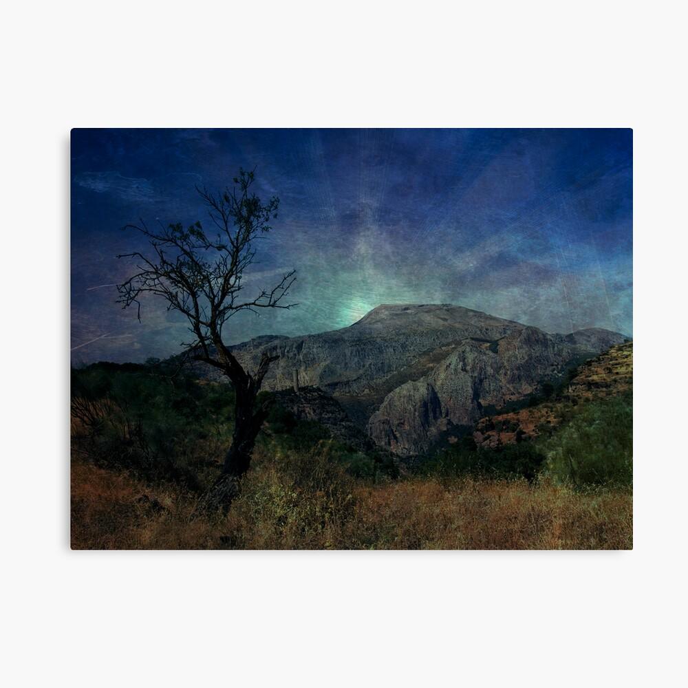 Darkness, death tree Canvas Print