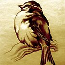 Sparrow In The Cold by Patricia Howitt