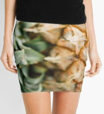 Clarity  Mini Skirt