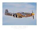 """P-51 Mustang """"Little Horse"""" by Kristoffer Glenn Pfalmer"""