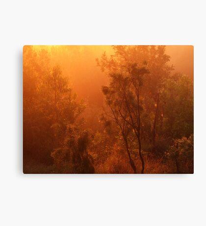 """Golden Mist & Raindrops"" Canvas Print"