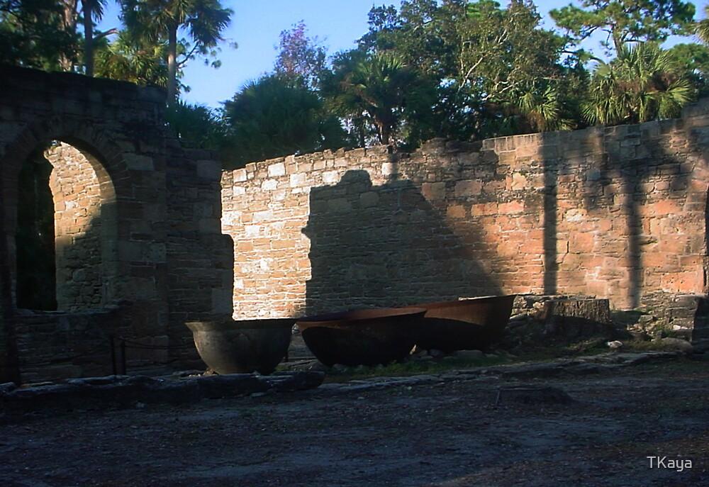 Ruins by TKaya