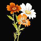 Orange by Catherine Hamilton-Veal  ©