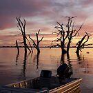 Lake Bonney by Dene Wessling
