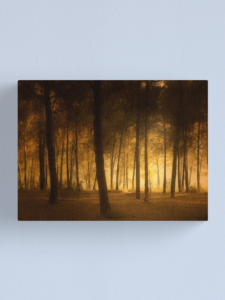 Alternate view of through the trees Canvas Print
