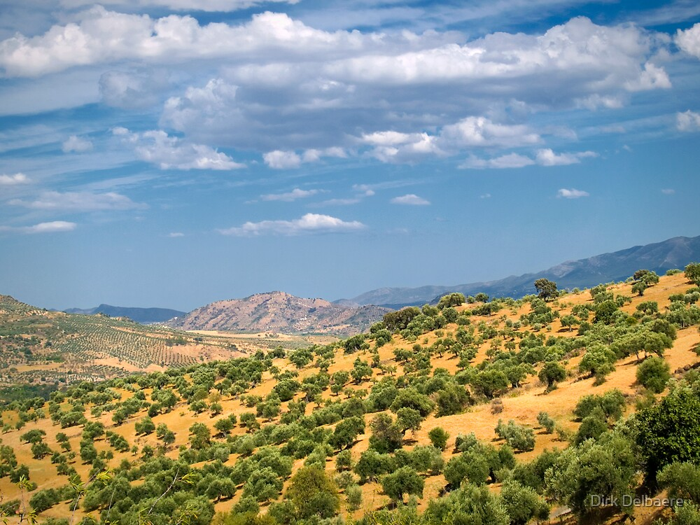 Andalucia, Spain by Dirk Delbaere