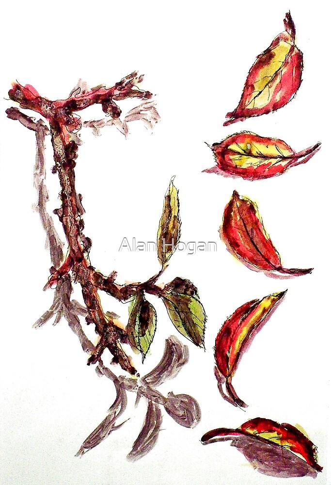 Autumn Leaves by Alan Hogan
