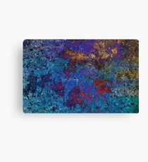 colorful end of the cycle  Canvas Print