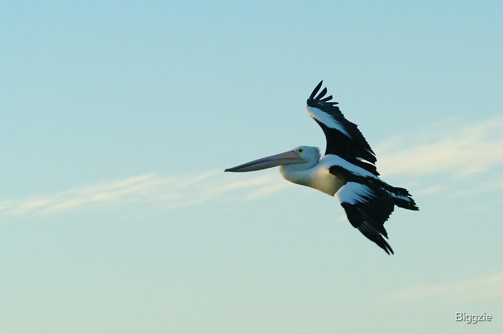 Gliding By by Biggzie