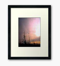Across the Frozen Swamp Framed Print