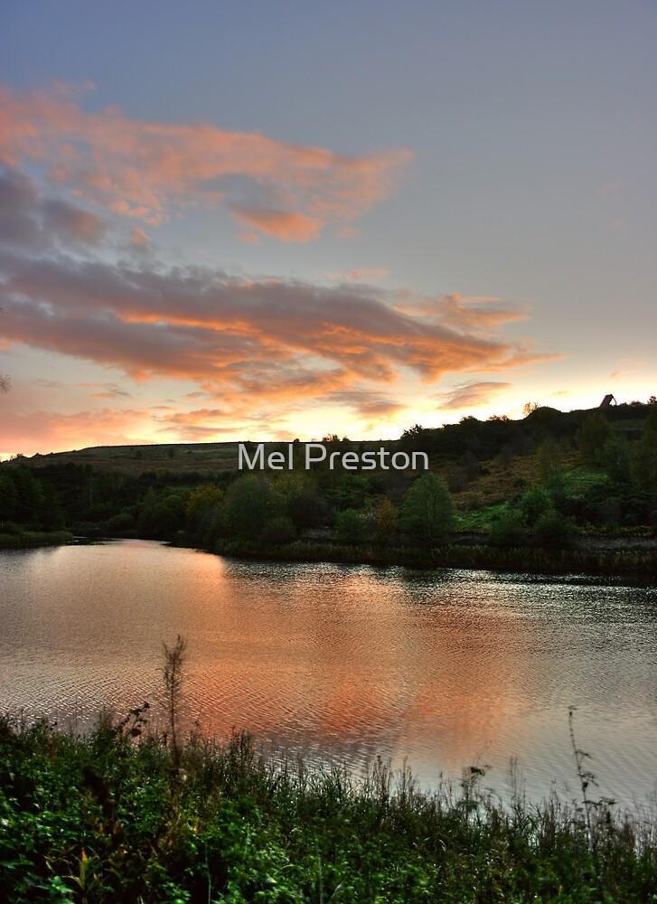 Ulley Reservoir by Mel Preston