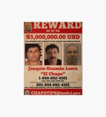 Lámina de exposición El Chapo quería