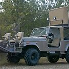 Safari Buggy by KSkinner