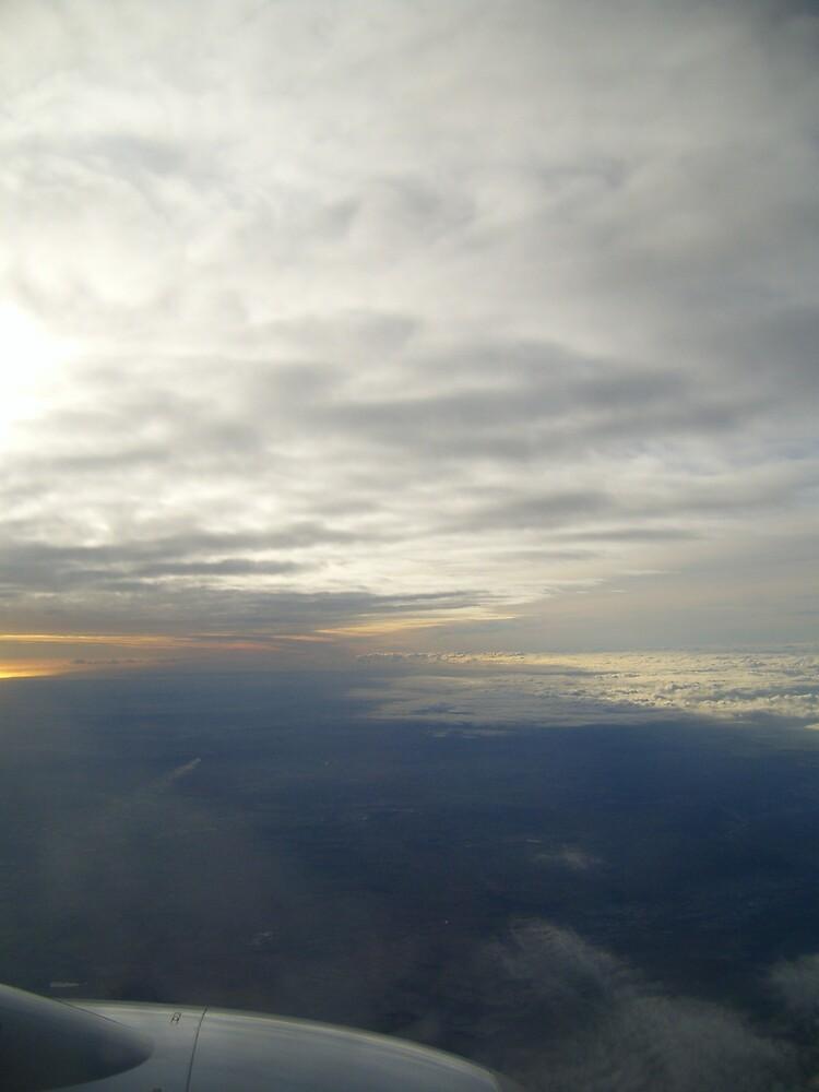 Flying by amandafriend