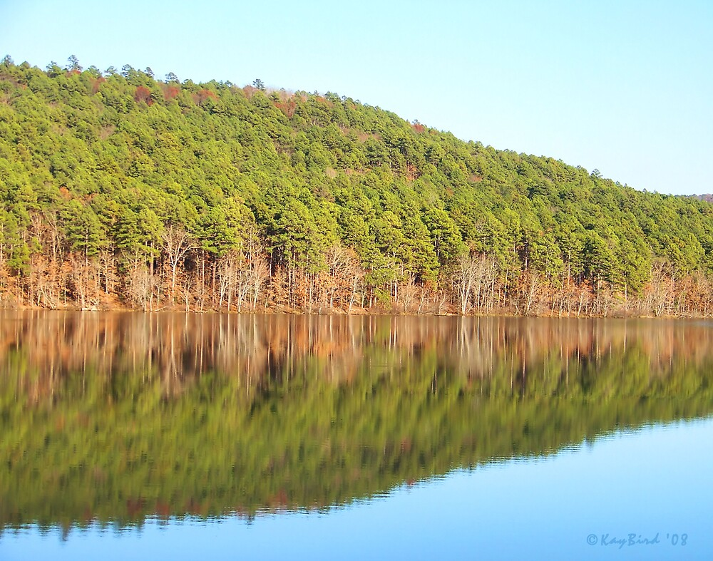 Peaceful Reflections by Kay  G Larsen