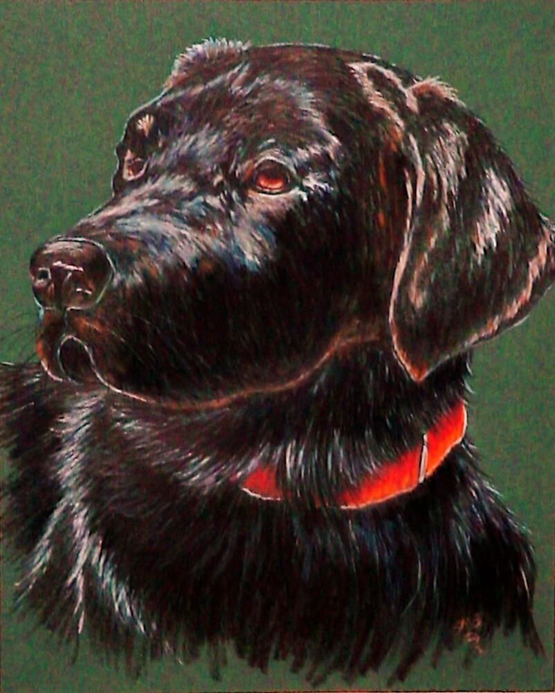 """King Charles""~ Portrait Of A Black Lab by Susan McKenzie Bergstrom"