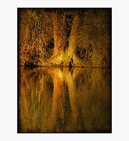 River Thames Reflection Photographic Print