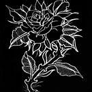 Dark Rose by JoshConwayArt